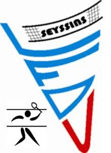 Logo les fous du volant Seyssins