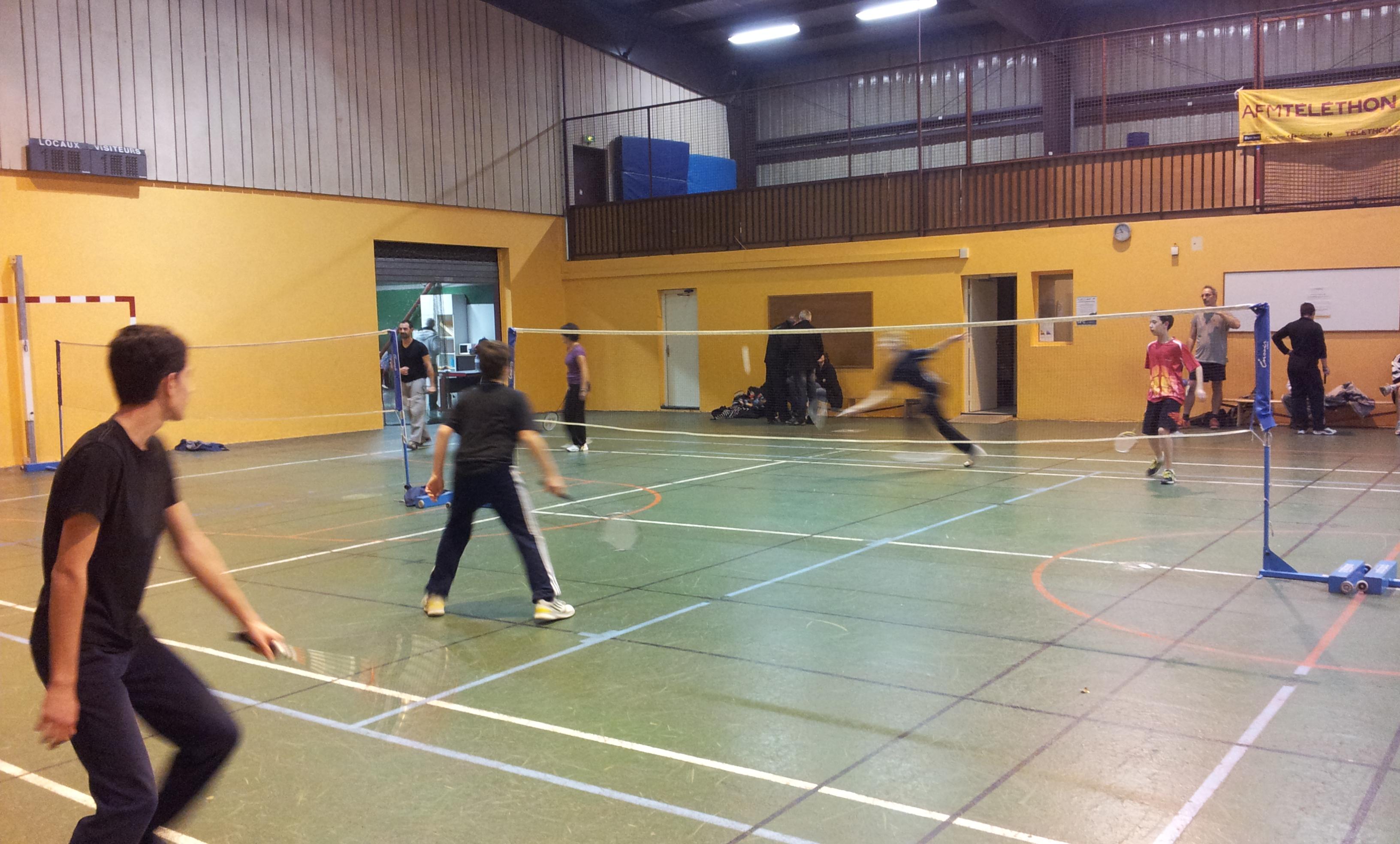Badminthon LFDV 2014-12-06