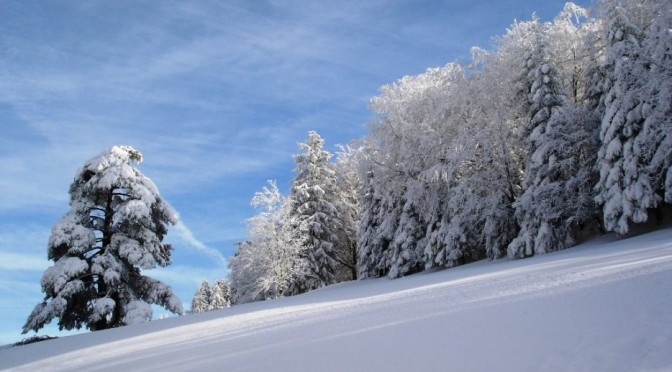 Suspension des créneaux à Jean Beauvallet pendant les vacances d'hiver